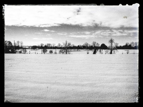 Tudor Hall School Main Drive viewed from Wykham Park Farm (Photo credit: @johnfield1)