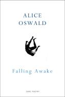 Falling Awake.png